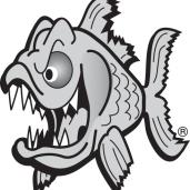 DL_fish300